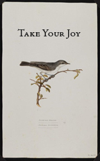 take your joy icon